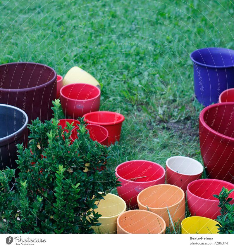 Blue Beautiful Red Yellow Stone Garden Orange Flowerpot Embellish Utilize