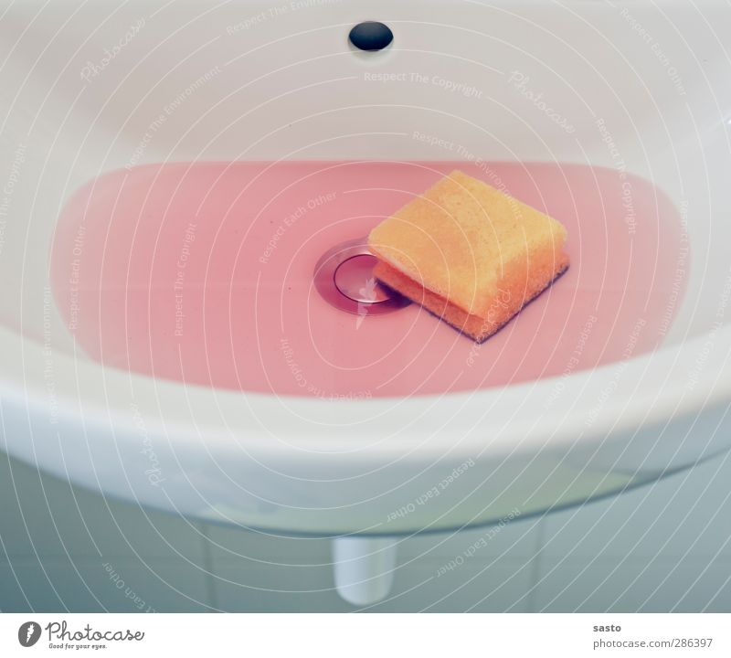 Life Living or residing Cleaning Break Clean Bathroom Clarity Pure Tile Considerable Household Photos of everyday life Sink Minimalistic Cleanliness Sponge