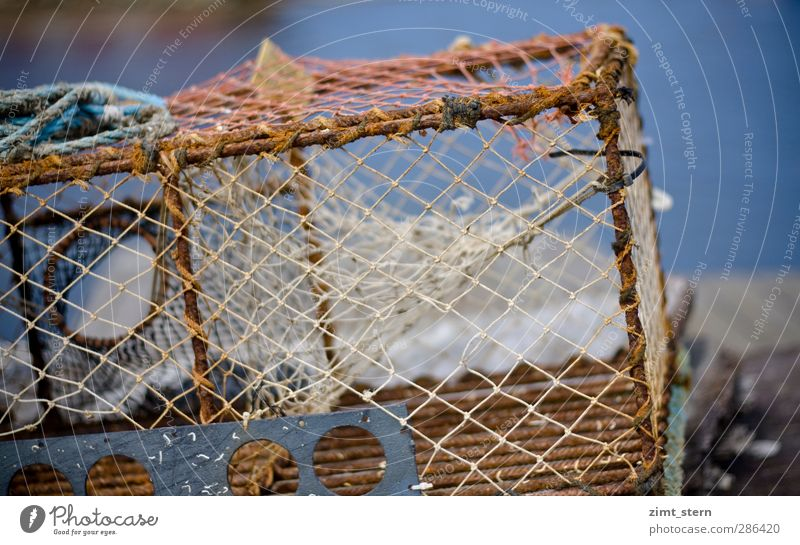 nets Fish Seafood Profession Fisherman Fishing (Angle) Net Tool Coast Fjord Göteborg Skerry Island Navigation Fishing boat Rope Wireframe Lie Blue Brown Rust