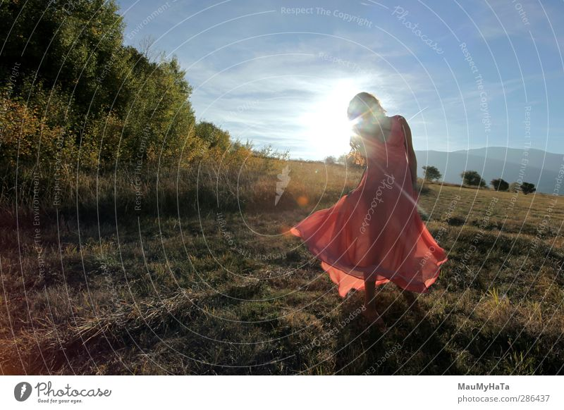 dancing girl in the field of solar rays Human being Sky Nature Youth (Young adults) Beautiful Summer Plant Tree Sun Adults Young woman Autumn Grass Movement