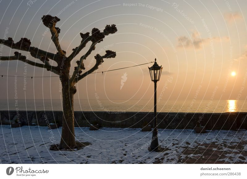 Lantern, lantern ... Landscape Sky Horizon Sunlight Winter Lake Yellow tranquillity silent Lake Constance Colour photo Copy Space right Evening Light Sunbeam