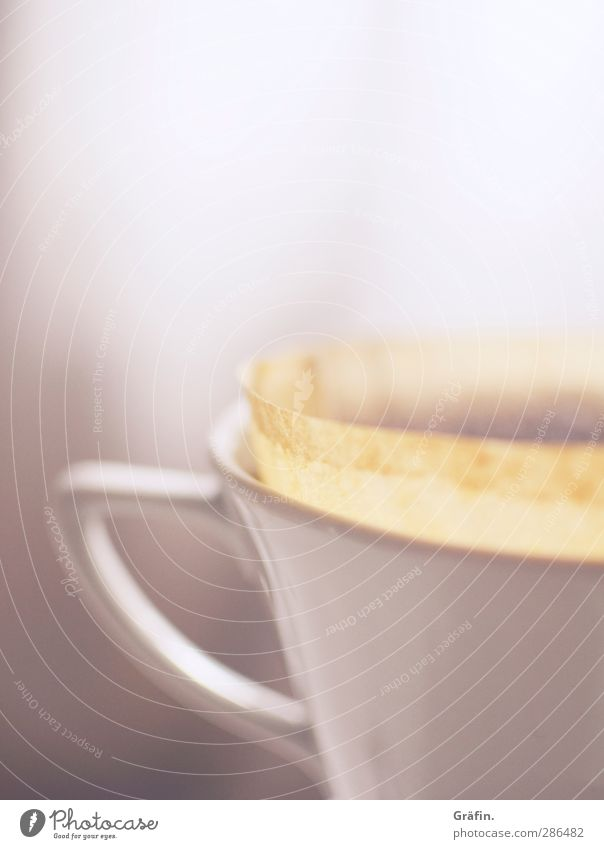 coffee break Breakfast To have a coffee Hot drink Coffee Cup Relaxation Calm Fragrance White Fatigue Thirst Wellness Steam Colour photo Interior shot Deserted