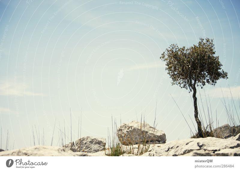 Nature Vacation & Travel Tree Loneliness Calm Landscape Environment Mountain Growth Esthetic Desert Spain Remote Majorca Mediterranean Survive
