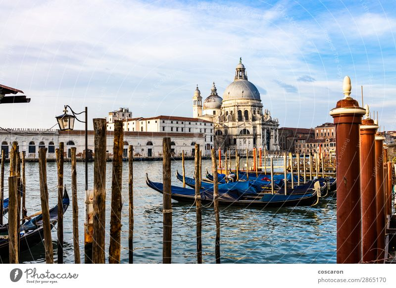 Empty gondolas floating on a lagoon of Venice, Italy Sky Vacation & Travel Old Summer Blue Town Beautiful White Landscape Ocean Winter Black Architecture