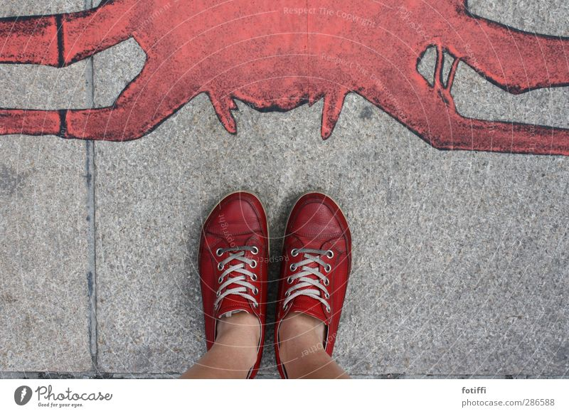 White Red Calm Dye Gray Fashion Footwear Stand Athletic Brave Argument Sneakers Paving stone Leather Spider Stay
