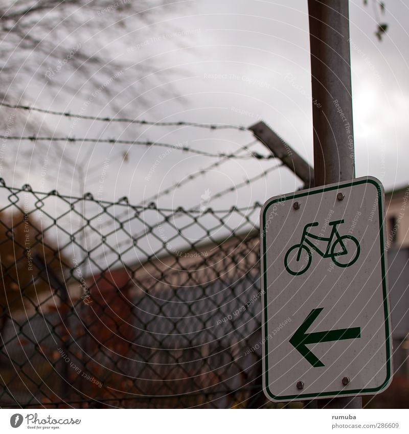 Nature Sports Movement Lanes & trails Healthy Bicycle Contentment Signs and labeling Trip Signage Cycling Arrow Copy Space Cycling tour Means of transport