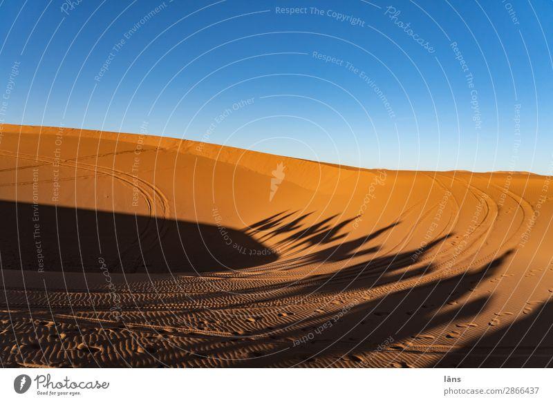 Caravan lll Morocco Desert Dromedary Camel Shadow Sand caravan