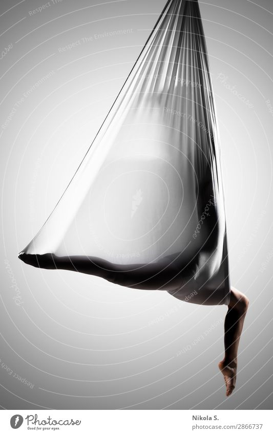 female posing aerial anti-gravity yoga on a hammock Lifestyle Body Athletic Wellness Relaxation Sports Yoga Human being Young woman Youth (Young adults) Woman