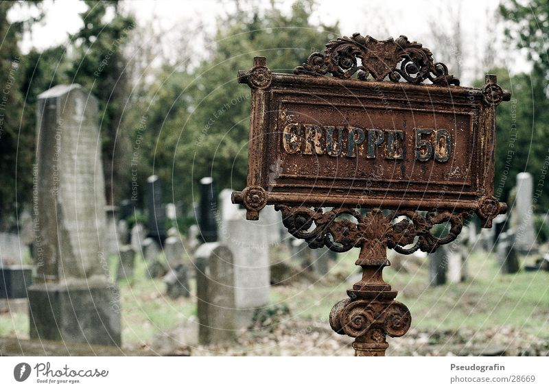 Group 50 Cemetery Vienna Tombstone Grave Historic Signs and labeling Rust