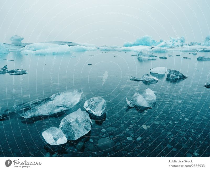 Ice and snow on water Snow Water Surface Coast Iceland big Cold Winter Nature White Landscape Frozen Seasons Frost North Weather Vacation & Travel Climate