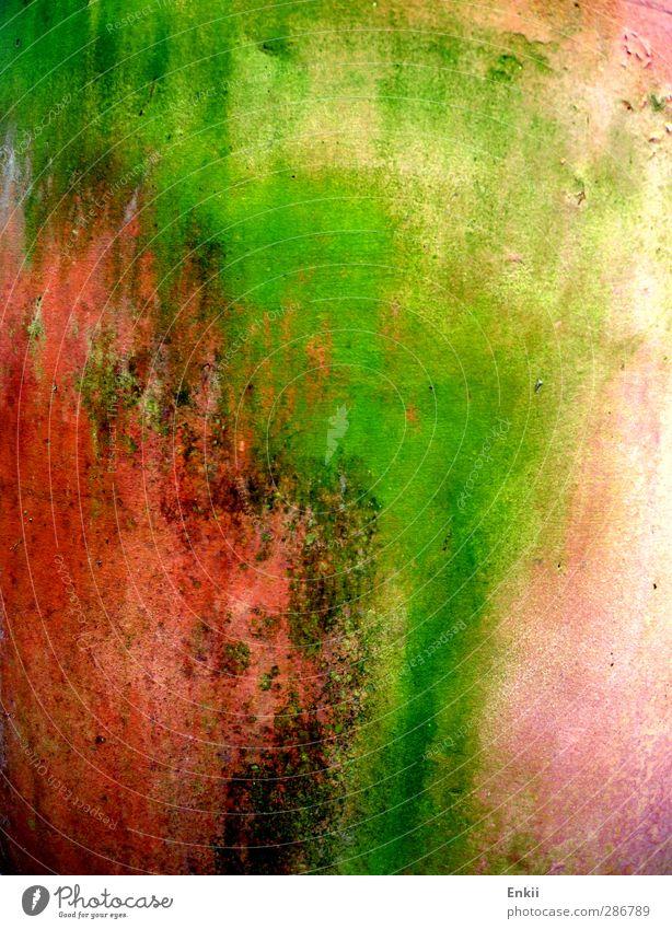 flower pot Garden Nature Pot plant Stone Old Dirty Green Orange Pink Red Transience Flowerpot Terracotta Daub Putrefy Colour photo Multicoloured Exterior shot