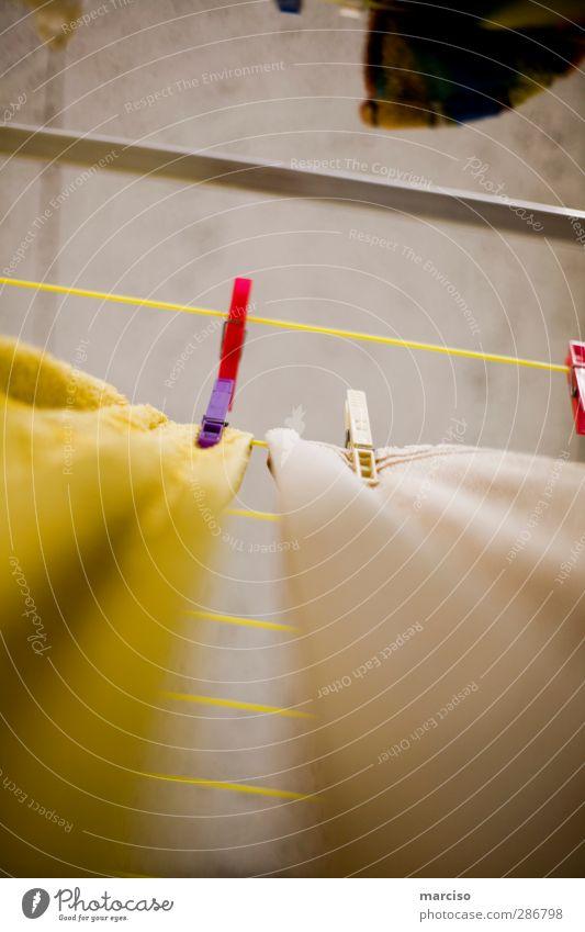 Growth Wet Dry Washing Laundry Clothesline Cellar Washer Clothes peg Tumble dryer Laundry basket