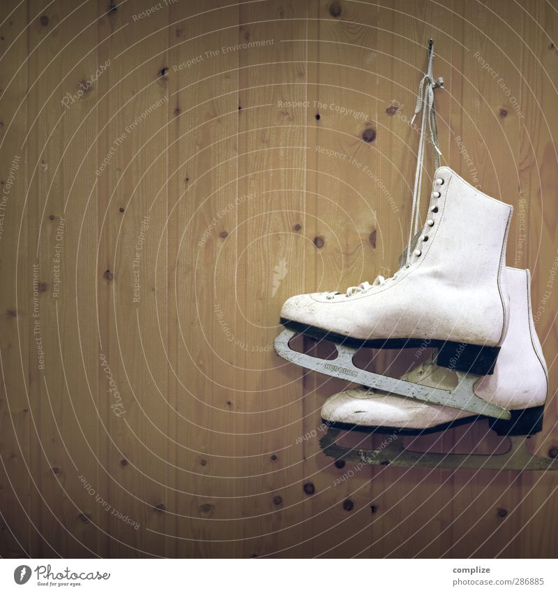 skates Furniture Room Children's room Club Disco Sports Fitness Sports Training Winter sports Sporting Complex Footwear Steel Rust Healthy Uniqueness