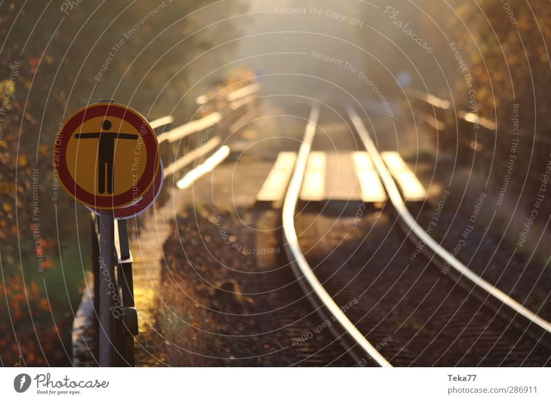 Nature Forest Environment Signs and labeling Transport Signage Threat Curiosity Protection Railroad tracks Traffic infrastructure Mobility Know