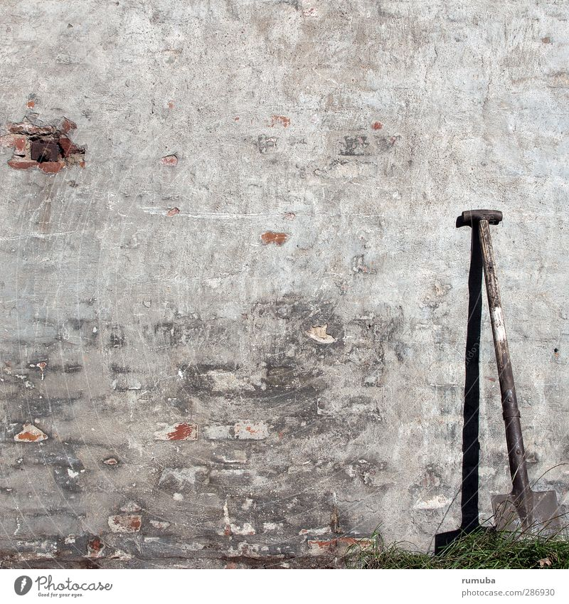 Wall (building) Gray Wall (barrier) Garden Field Earth Facade Dirty Break Lawn Agriculture Trashy Tool Craftsperson Gardening Forestry