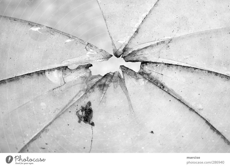 Jump Art Ice Glittering Glass Broken Point Anger Force Sharp thing Hollow Crack & Rip & Tear Sculpture Slice Aggression Aggravation