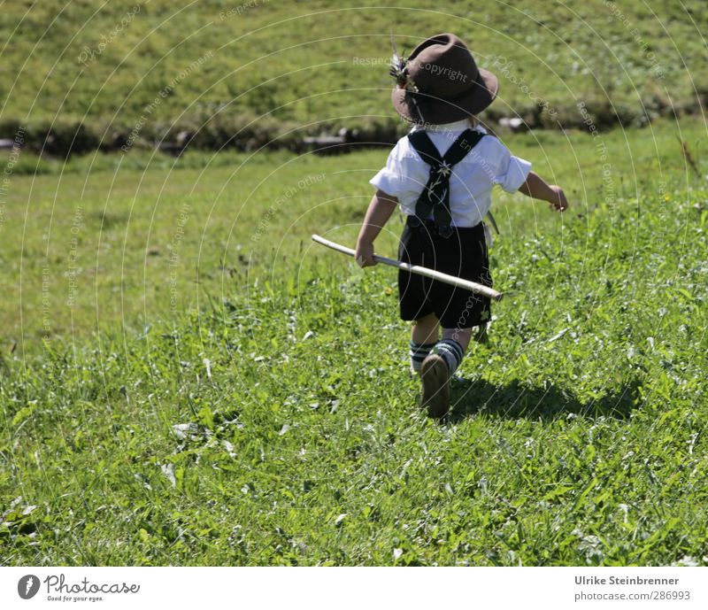 Human being Child Beautiful Meadow Mountain Life Grass Boy (child) Freedom Happy Field Infancy Masculine Walking Hiking Trip