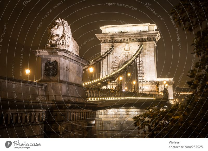 bad weather in budapest Capital city Old town Bridge Building Architecture Tourist Attraction Landmark Monument Illuminate Vacation & Travel Looking Famousness