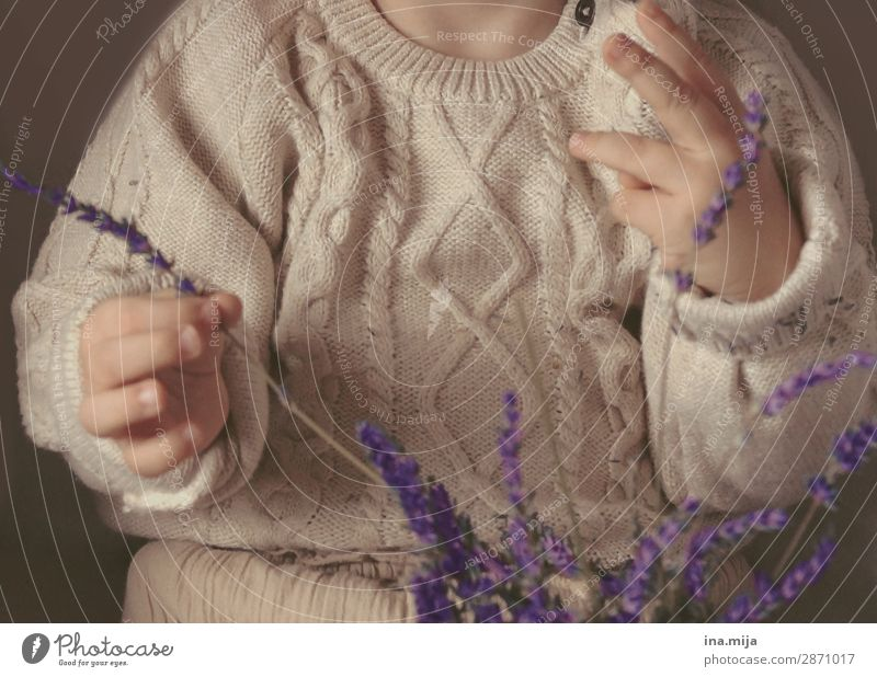 Lavender scent tickles the nose Human being Child Toddler Girl Boy (child) Infancy Life 1 1 - 3 years 3 - 8 years Fashion Clothing Sweater Knitting pattern