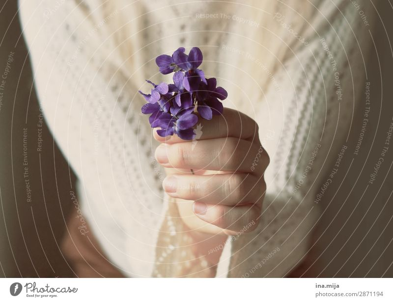 For YOU! Human being Feminine Young woman Youth (Young adults) Woman Adults Mother Life Plant Flower Blossom Forget-me-not Violet Gift Mother's Day Colour photo