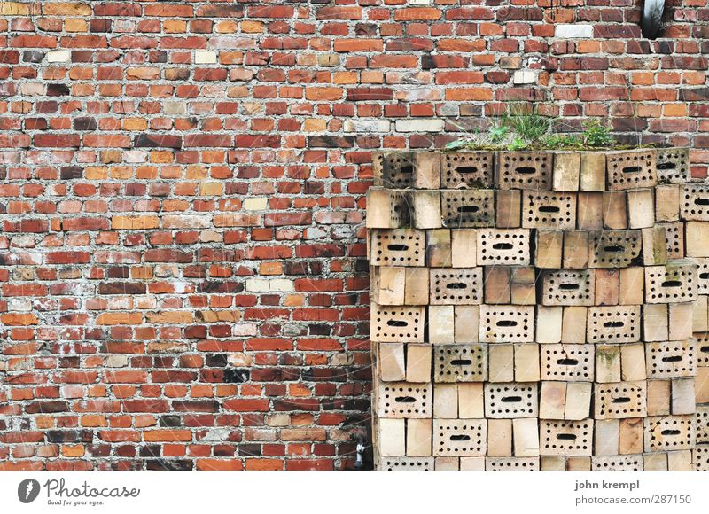 No one intends to build a wall. Town House (Residential Structure) Manmade structures Architecture Wall (barrier) Wall (building) Facade Brick wall Brick red