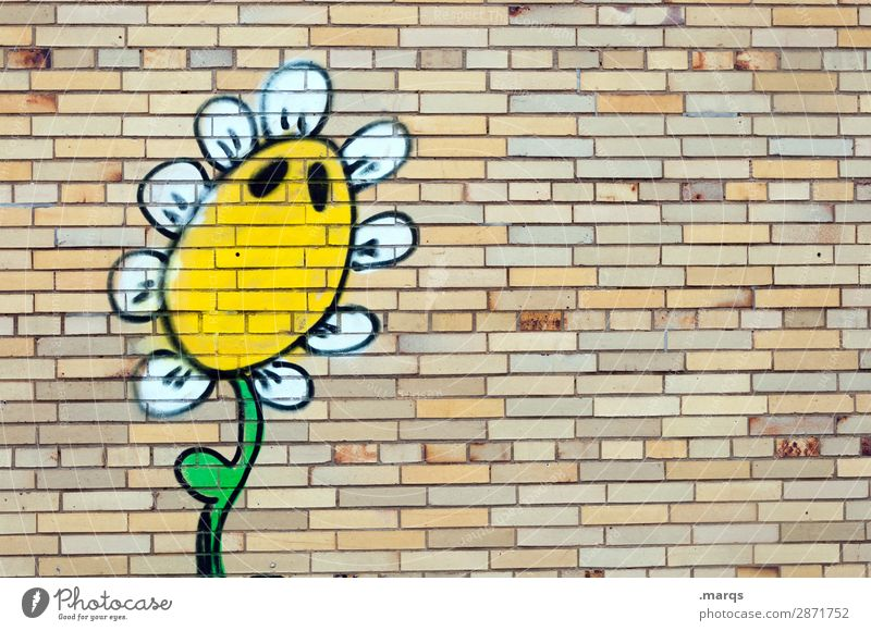 sunflower Flower Wall (barrier) Wall (building) Graffiti Funny Climate Nature Exterior shot Copy Space left Copy Space top Copy Space bottom Copy Space middle