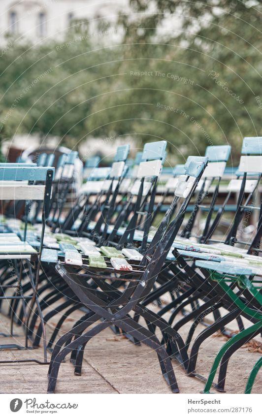 Plant Tree Leaf Park Facade Closed Free City life Chair Chaos Classification Sidewalk café Folding chair