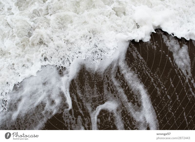 surf wave Nature Sand Water Wind Gale Waves Coast Beach Baltic Sea Threat Fluid Maritime Wet Gray Black White Surface of water Ocean Bird's-eye view