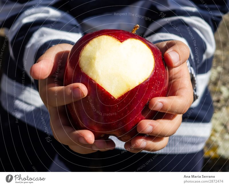 A child with a red apple in his hands Fruit Apple Nutrition Organic produce Diet Lifestyle Health care Healthy Eating Overweight Wellness Child Hand Heart