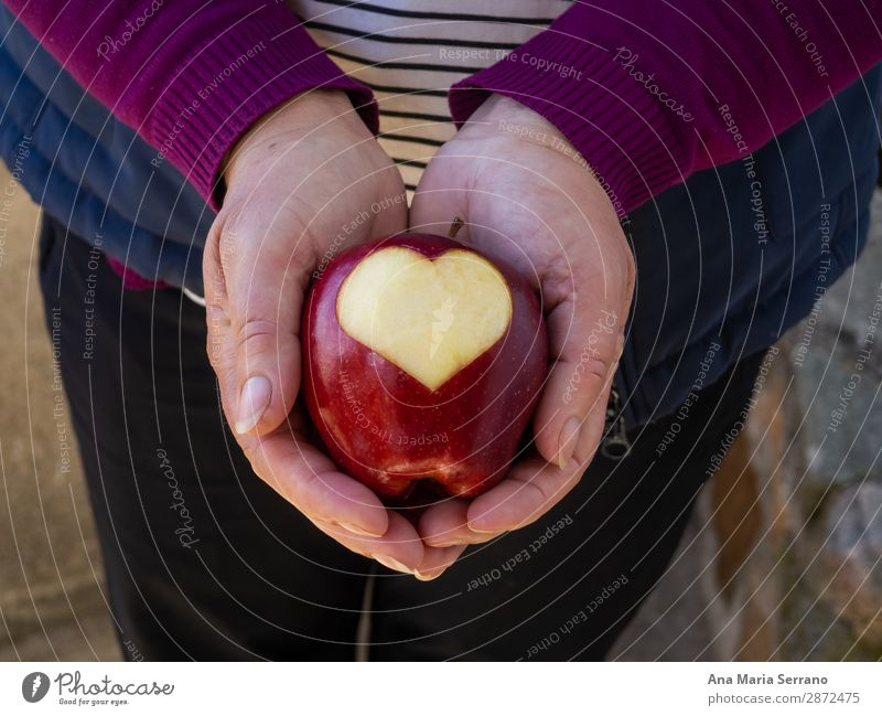 A person with a red apple in his hands Fruit Apple Nutrition Organic produce Diet Lifestyle Health care Healthy Eating Overweight Wellness Human being Hand