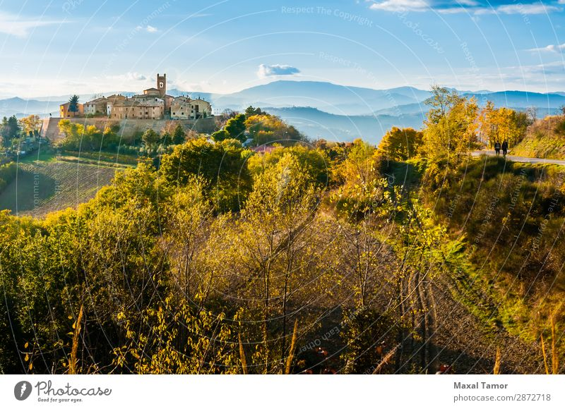 Village of Montefabbri in Italy Blue boundary walls Castle Church Landscape Europe field Green Ground Hill Historic House (Residential Structure) Marche