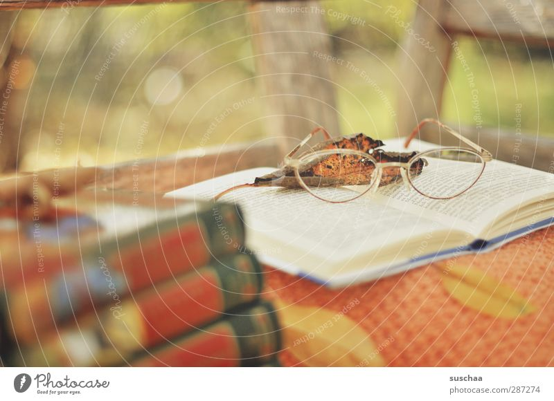 reading time Well-being Calm Leisure and hobbies Wood Glass Paper Eyeglasses Leaf Book Reading Bench Garden Break Colour photo Exterior shot Deserted