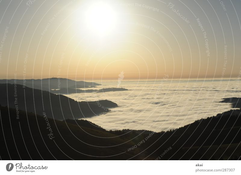 Happy birthday,photocase! Environment Nature Landscape Sky Clouds Sun Sunrise Sunset Fog Forest Mountain Blue Pink Black White Colour photo Exterior shot