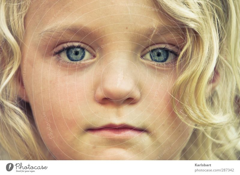 Human being Child Girl - a Royalty Free Stock Photo from ...