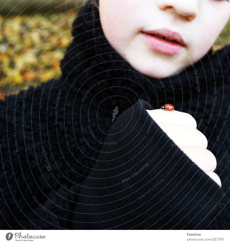 Human being Child Nature Hand Red Girl Animal Black Face Environment Autumn Feminine Head Natural Infancy Arm