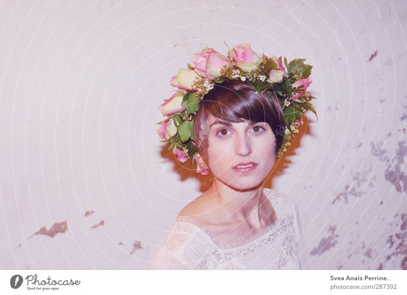 Human being Youth (Young adults) Beautiful Flower Leaf Adults Face Young woman Wall (building) Feminine Hair and hairstyles Wall (barrier) Blossom Head