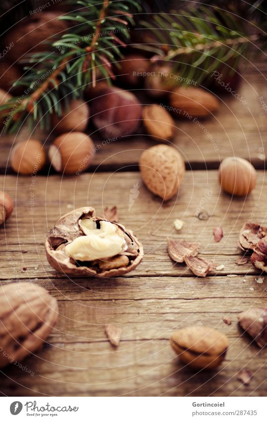 Christmas & Advent Feasts & Celebrations Brown Food photograph Delicious Nut Wooden table Walnut Fir branch Hazelnut Nutshell Almond Nut brown