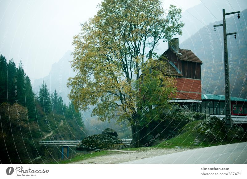 Nature Tree Landscape House (Residential Structure) Environment Mountain Autumn Rock Hiking Bridge Alps Bay Hut River bank Bavaria Canyon