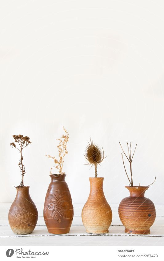 vases with dry flowers Vase Decoration Country house Style Wooden table Retro GDR Containers and vessels Pottery Clay Flower vase Dried flower Dry Shriveled