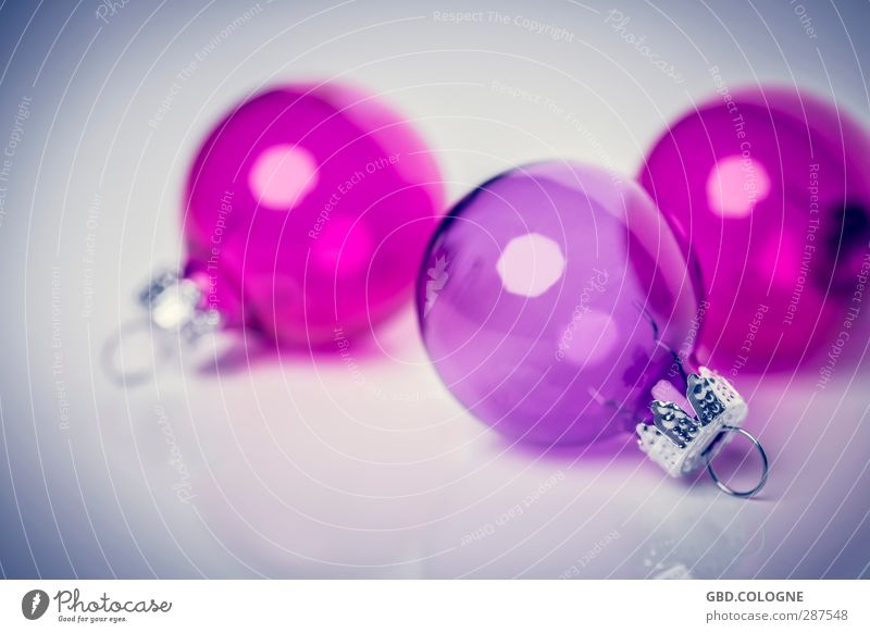 Christmas & Advent Pink Decoration Modern Glass Round Kitsch Violet Sphere Transparent Christmas tree Christmas decoration Fragile December Fastening
