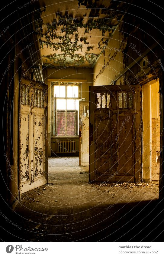 Old Colour Loneliness Calm Window Wall (building) Wall (barrier) Building Exceptional Door Empty Esthetic Broken Gloomy Eternity Factory