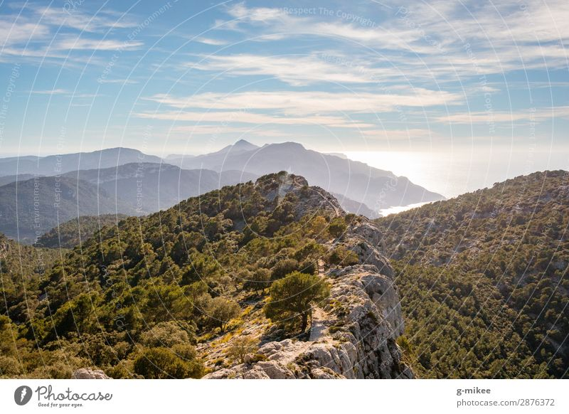 Hiking on the mountain ridge of Mallorca Summer vacation Ocean Mountain Nature Landscape Earth Water Sky Beautiful weather Rock Peak Coast Island Discover