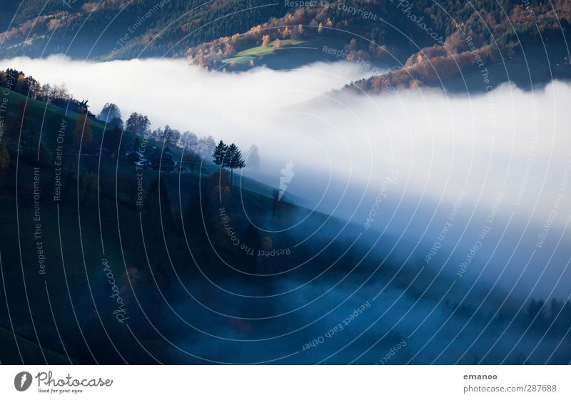 where the clouds flow Environment Nature Landscape Air Water Sky Clouds Autumn Climate Weather Fog Plant Tree Forest Hill Mountain Canyon Movement Dark Soft