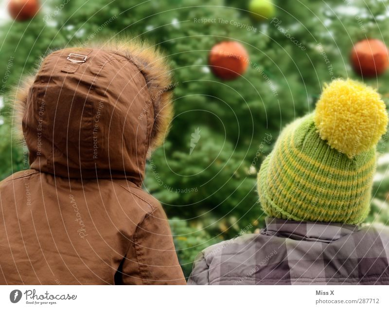 Two christmas elves Feasts & Celebrations Christmas & Advent Human being Child Toddler Brothers and sisters Infancy 2 1 - 3 years 3 - 8 years Winter Tree Cap