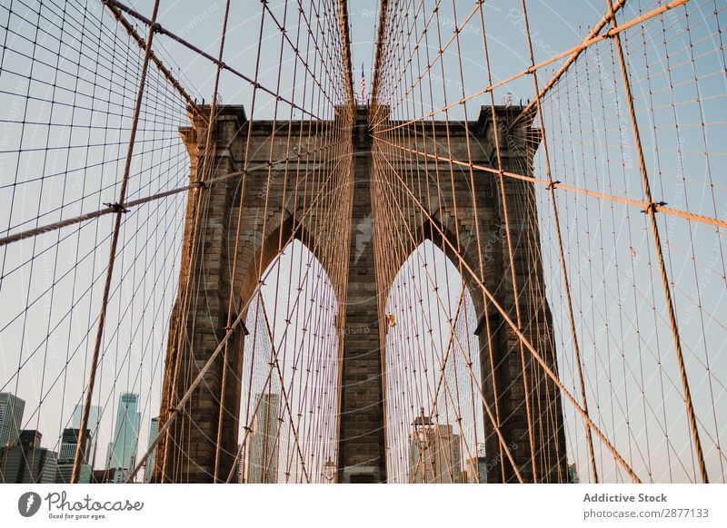 Bridge cables in perspective view against cityscape Architecture Skyline New York america USA Street Iron chain Contemporary Landscape Perspective Construction