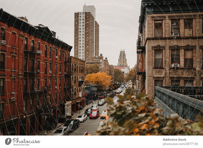 Street with red buildings Skyline Building New York Old Panorama (Format) City america USA Architecture Town Vantage point scenery tranquil Pedestrian Downtown