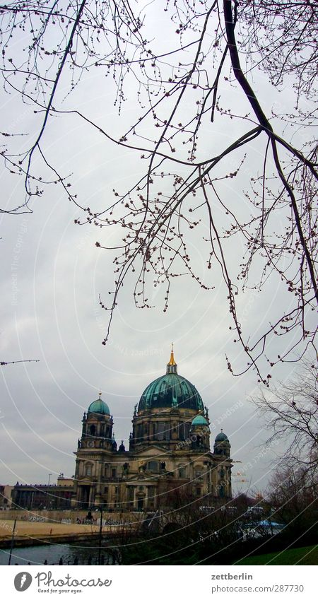 Berlin Cathedral Environment Sky Autumn Winter Climate Climate change Weather Bad weather Tree Town Capital city House (Residential Structure) Church Dome