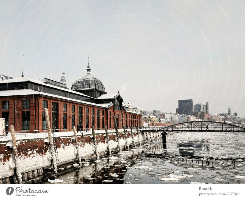Hamburg harbour in winter Winter Beautiful weather Ice Frost Snow River Elbe Port City Bridge Building Architecture Tourist Attraction Navigation