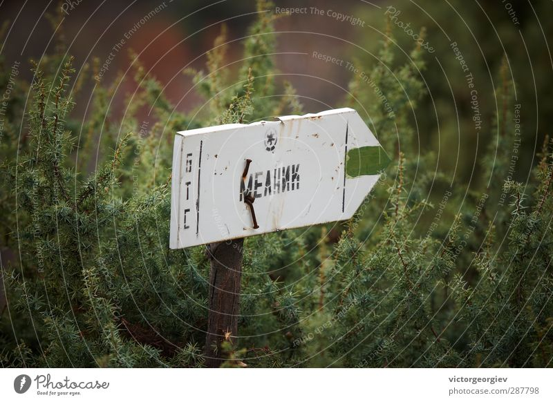 Tourist sign in Bulgarian mountain Vacation & Travel Plant Green Summer Far-off places Environment Mountain Spring Wood Metal Tourism Signs and labeling Bushes
