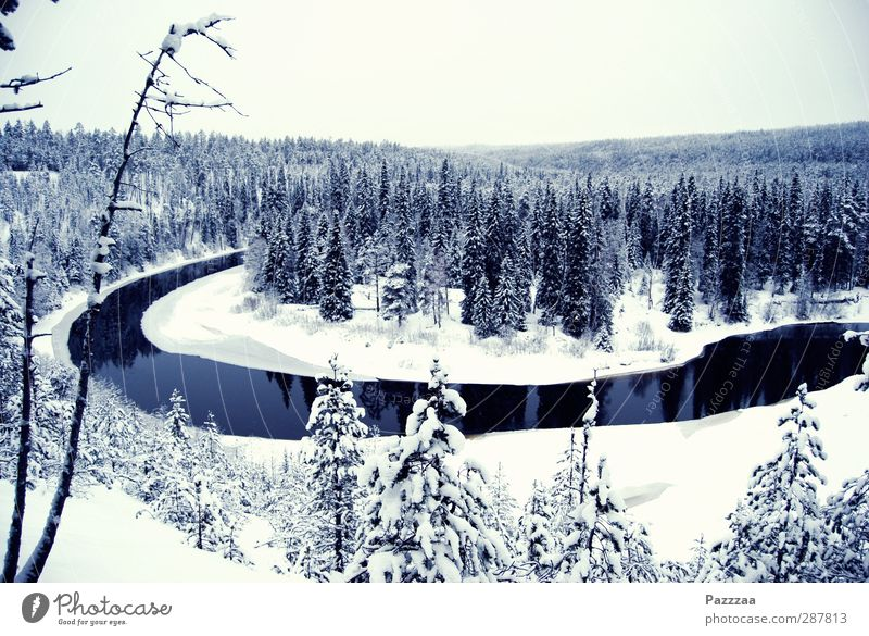 Santa's Home Calm Adventure Far-off places Freedom Winter Snow Winter vacation Hiking Landscape Plant Forest River Deserted Cold Black White Anti-Christmas